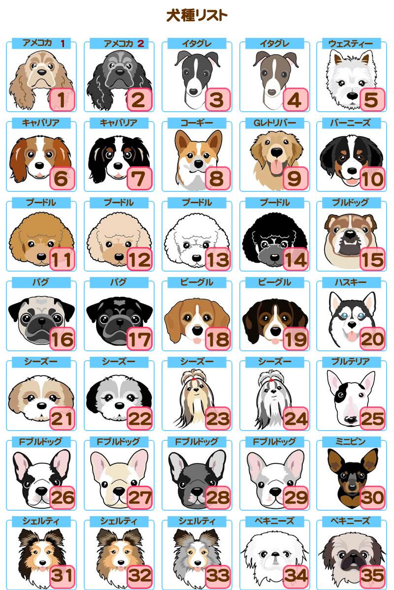 犬種リスト